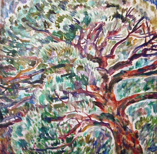 Crimean pine70x69cm - 1995