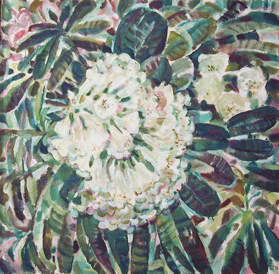 Rhododendron69x69cm - 1996