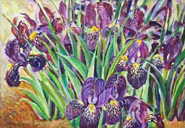 Dwarf irises48x69cm - 2002