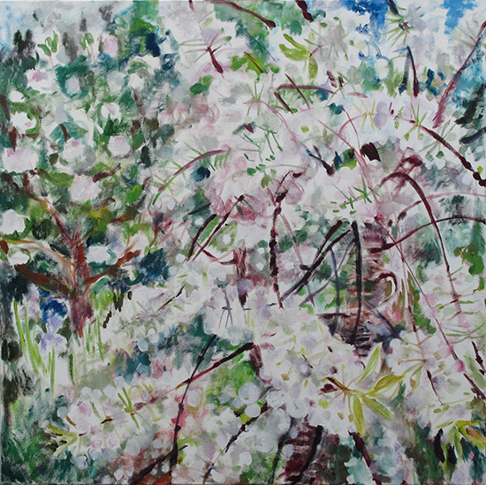 Cherry blossom80x80cm - 2011