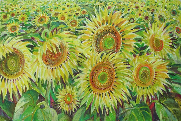 Field of sunflowers80x120cm - 2014